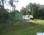 15040 Al Hwy 273, Gaylesville image