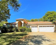 114 Masters Lane, Safety Harbor image