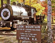 90 Loon Mountain Road Unit #1337A, Lincoln image