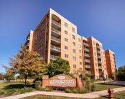 6807 N Milwaukee Avenue Unit #207, Niles image