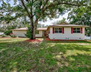 11505 Falkirk Place, Riverview image