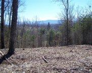 Lots 10, 11 Mountain Grove Ln, Seymour image