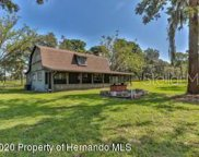 12434 Honey Pot Trail, Brooksville image