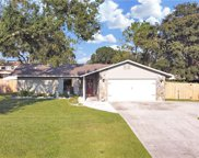 3016 Lake Saxon Drive, Land O' Lakes image