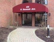 101 Summit Avenue Unit #205, Park Ridge image