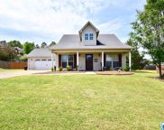 220 Hathaway Ln, Odenville image