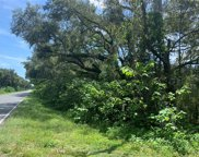 Hwy 41, Dunnellon image
