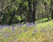 Lot #5 Steele Canyon  Road, Napa image