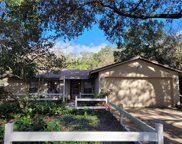 2410 Towery Trail, Lutz image