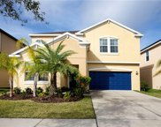 12221 Ballentrae Forest Drive, Riverview image