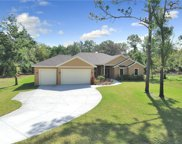 17907 Simmons Rd, Lutz image