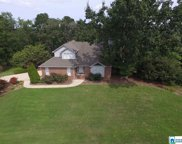4475 Co Rd 12, Odenville image