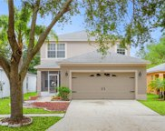 8321 Arabian Dunes Place, Riverview image