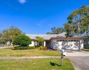 2931 Cara Court, Palm Harbor image