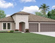 10833 Crushed Grape Drive, Riverview image
