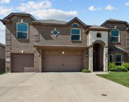 9817 Yellow Cup Drive, Fort Worth image