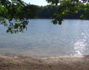 Lot 106 E Sanford Lake Drive, Lake Ann image