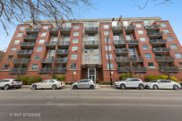 1100 W Montrose Avenue Unit #306, Chicago image