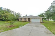 12427 Partridge Street, Spring Hill image