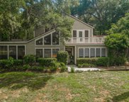 12211 Twin Branch Acres Road, Tampa image