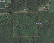 NW Old Wilson River  RD, Gales Creek image