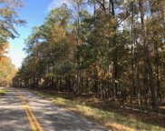 Calamus Pond Road, Summerville image