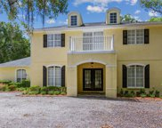 17604 Boy Scout Road, Odessa image