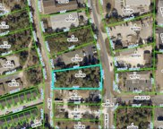 Lamson Avenue, Spring Hill image