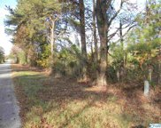 Tract # 4 C County Road 142, Sand Rock image