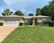 11401 Beechdale Avenue, Spring Hill image