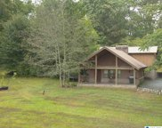 185 Copper Springs Road, Odenville image