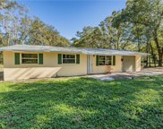 10920 Browning Road, Lithia image