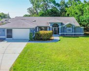 11408 Beechdale Avenue, Spring Hill image