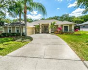 658 Belted Kingfisher Drive N, Palm Harbor image
