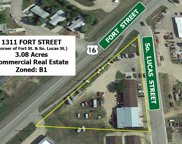 1311  Fort Street, Buffalo image