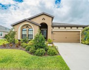 6111 Colmar Place, Apollo Beach image