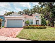 10617 Cardera Drive, Riverview image
