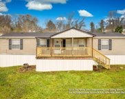 1341 Big Hollow Rd, Blountville image