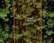 310 Alba Drive, Indian Lake Estates image