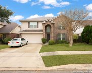 310 Hollow Trail, San Antonio image