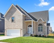 163 Hereford Farm, Clarksville image