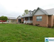 1300 Duncan Farms Rd, Steele image