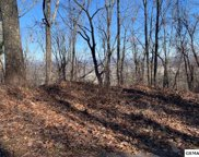 Lot 47 Twin City Way, Pigeon Forge image