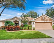 2204 Lodgeview Way, Valrico image