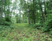 51847 E Lake Trail, Bigfork image