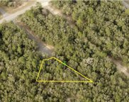 11095 N Edith Point, Dunnellon image