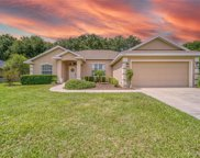 5024 County Road 125a, Wildwood image