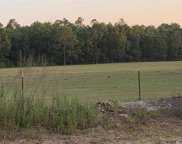 41935 County Road 25, Weirsdale image