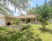 10815 Beverly Court, Clermont image