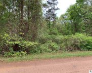 Lot 7 Williams Colony Road, Downsville image